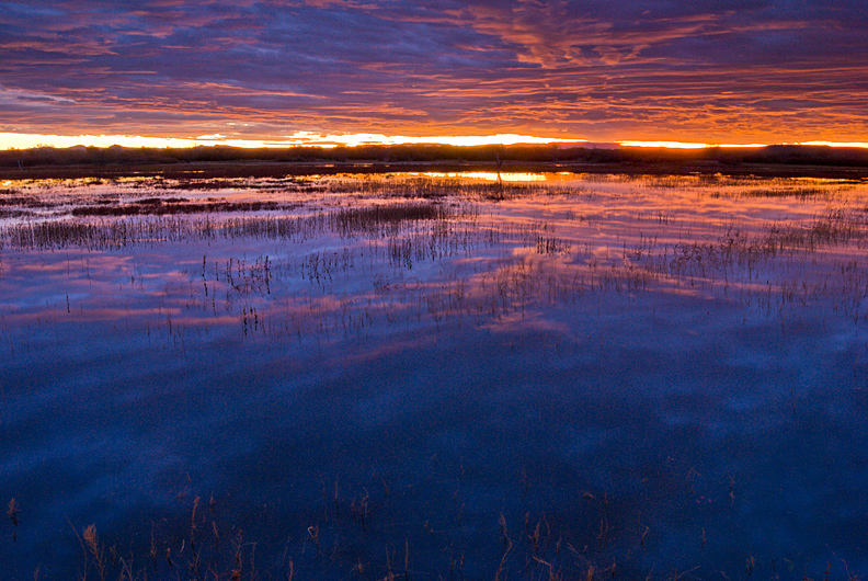 Sunrise photograph of Bosque del Apache National Wildlife Refuge, New Mexico.