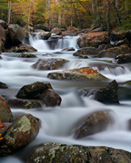 Great Smoky Mountains National Park Images