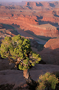 Dead Horse Point State Park Photograph