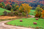 Autumn photograph of hay rolls in a Vermont field.
