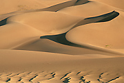 Image of Great Sand Dunes National Park.