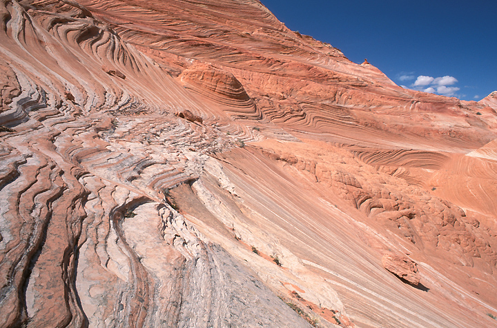 Image of Coyote Buttes area of Paria Canyon-Vermilion Cliffs Wilderness, Utah.