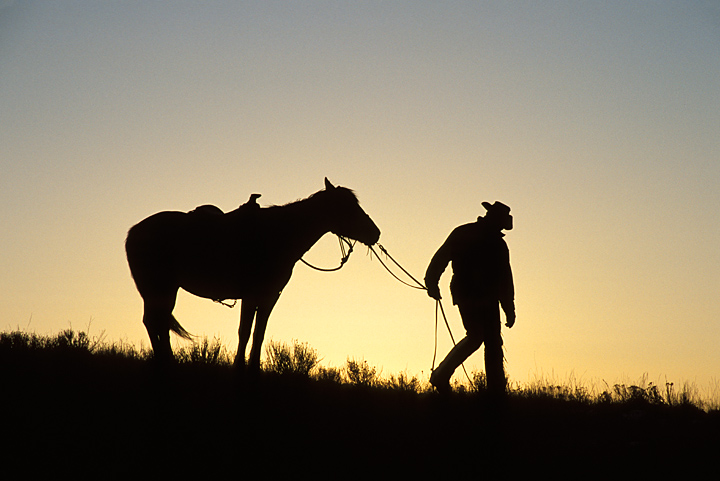 Western Photo Cowboy Horse Silhouette